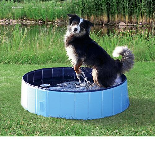 Verkoeling voor je hond bij warm weer met een hondenzwembad