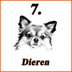 catalogus-belgie-nederland alles voor je huisdier.