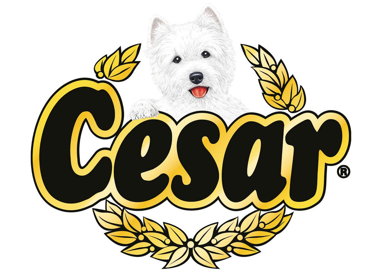Cesar hondenvoeding