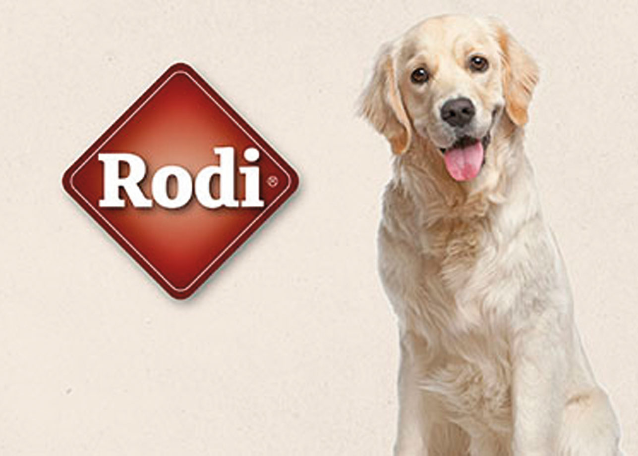 Het hondenvoer van Rodi is gemaakt zonder slechte toevoegingen. Dit betekent geen geur-, kleur- en smaakstoffen. Hierdoor is het voer van Rodi een maaltijd en een gezonde beloning in een.